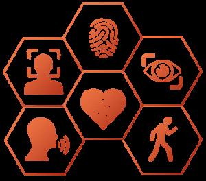Sechs Hexagone mit Symbolen der biometrischen Erkennung