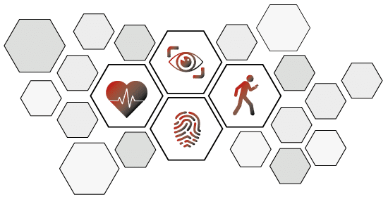 Hexagone mit Biometrie Icons